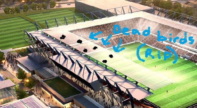 stadiumroof